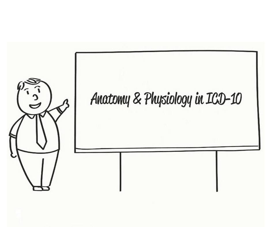 ICD-10 Basics: Anatomy & Physiology